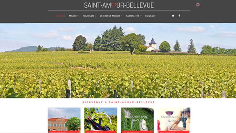 saint amour bellevue